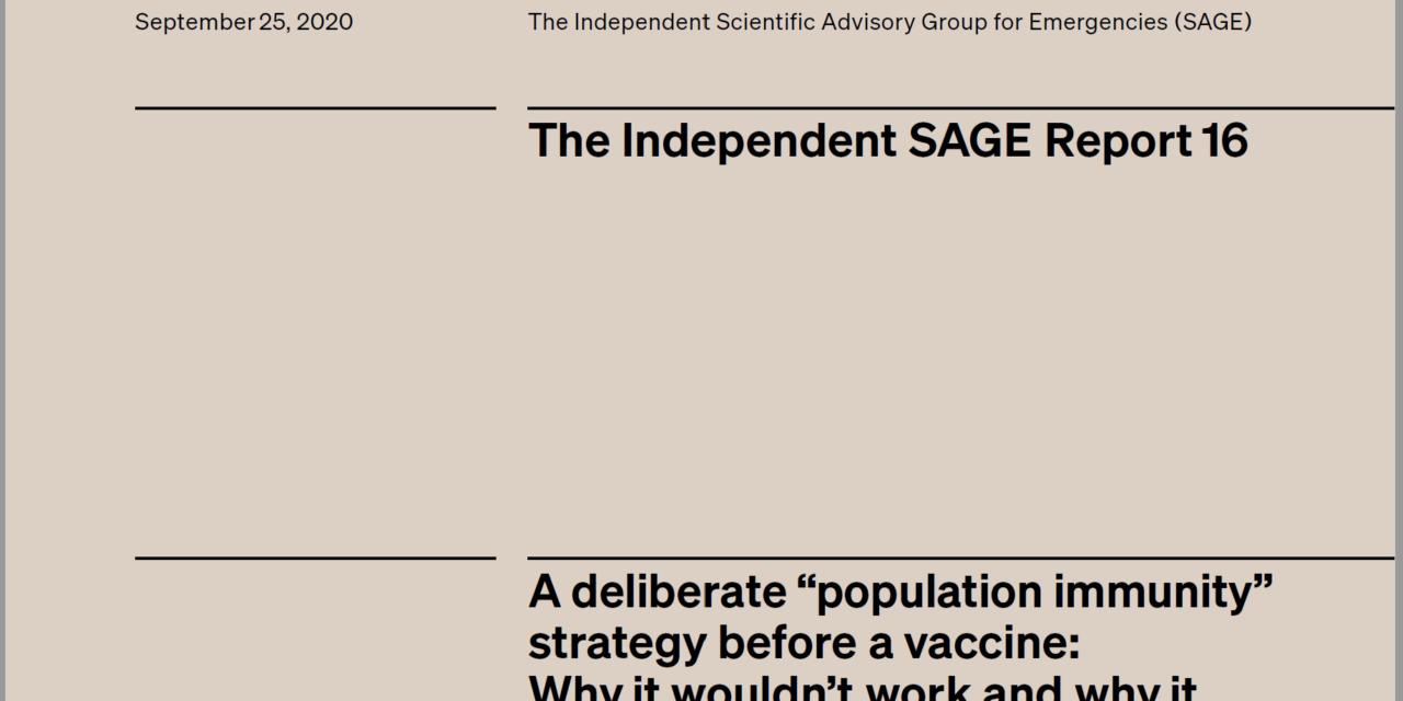 Why a population immunity strategy won't work