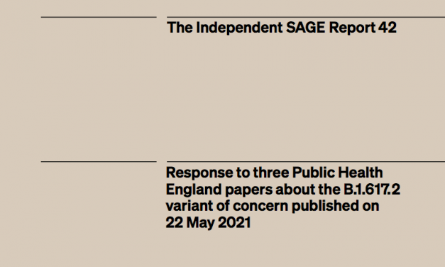 Response to three Public Health England papers about the B.1.617.2 variant of concern published on 22 May 2021